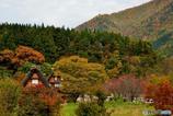 秋がいっぱい Ⅱ