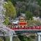 山車と桜と赤い橋