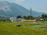 麦畑とyellow train