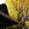 秋の玉敷神社