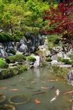 宝徳寺の風景1
