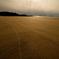 砂浜のスジ