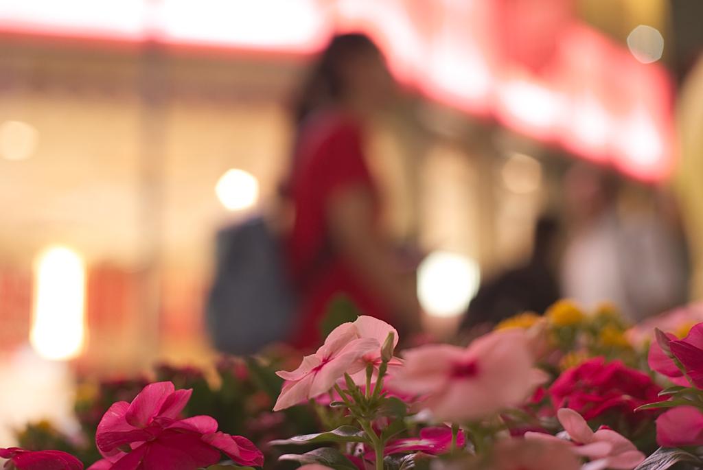 恋はいつもアマンドピンク