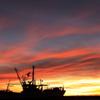 近所の港夕景