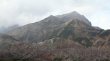 Mt  Dainichidake