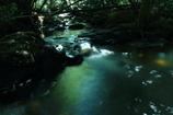 深緑の流れ2