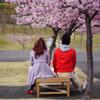 微笑ましい赤 桜の木の下で 。.:*♡