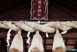 フィルム版 竜宮神社