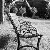 パールⅢで撮る椅子