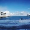 冬港・・・つかの間の晴れ間