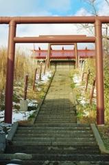 浜の神社・・・