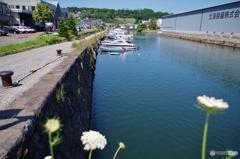 北運河散歩・・・
