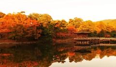 浮見堂 ~紅葉のパノラマ~