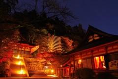 談山神社の紅葉③ ~Light Up~