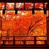 談山神社の紅葉① ~開幕~