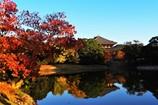 大仏池の紅葉2017