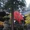 雨の永平寺・9