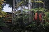 雨の永平寺・3