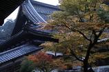雨の永平寺・2