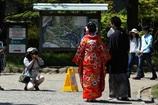 横浜三渓園ー7