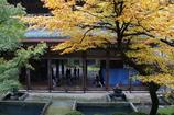 雨の永平寺・8