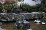 福井市 養浩館庭園