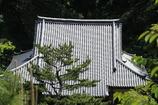 横浜三渓園ー6