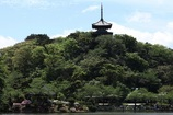 横浜三渓園ー4