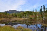 どじょう池の秋