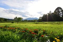 真夏の開田高原