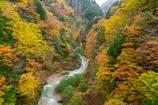 高瀬渓谷 紅葉