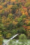 高瀬渓谷〜吊り橋〜