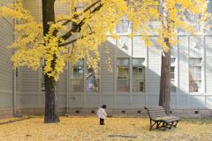 秋を感じて