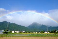 雨上がりの空に七色の虹が架かる