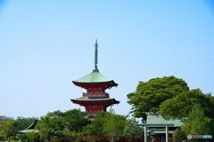 鳥居と三重塔