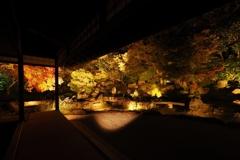 京都ちょっと紅葉