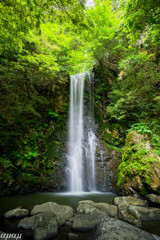 バルブ撮影の滝