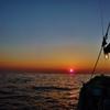 第千二百二十六作  「ふと手を休めれば 夜明けの海原」 神奈川県磯子