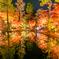曽木公園の秋