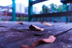 ひとひらの秋