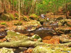 渓流の秋 Ⅲ