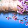 春への序曲