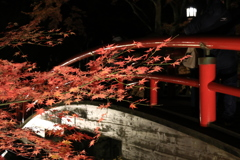 伊香保温泉の紅葉 河鹿橋ライトアップ