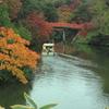 観光船・・只今より朝陽橋下くぐりま~す ^^