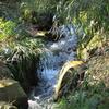 春・・格別の流水の音