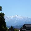 本日は晴れ~・・山が見える~^^