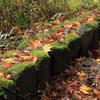 深まりゆく秋を感じる散策道