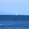静かな海に白いお船 ♪