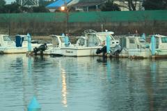 朝のボート係留場