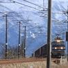 雄大な立山連峰を背に貨物列車が走る